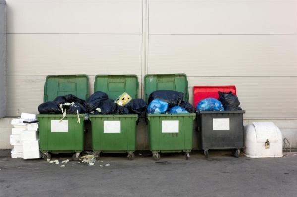 Раздельный сбор мусора действует в Ростовской области с 2019 года