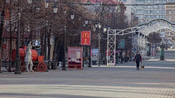 Власти дали ответы на главные вопросы о режиме самоизоляции в Челябинске