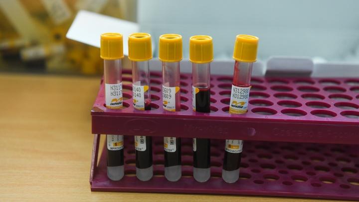 В Свердловской области 18 тысяч человек подали заявки на бесплатную проверку на антитела к COVID-19