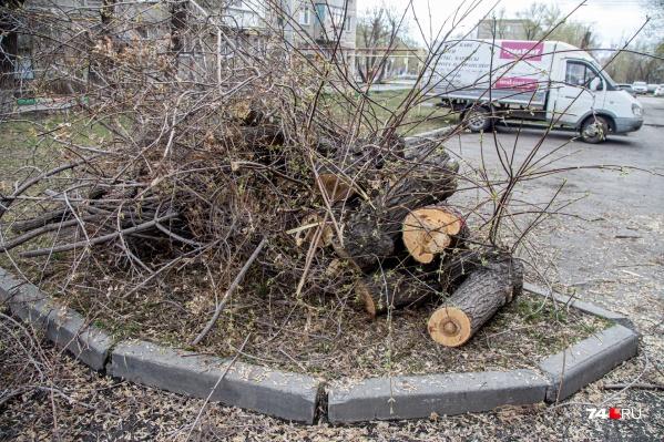 Вырубку на территории двора проводили коммунальщики