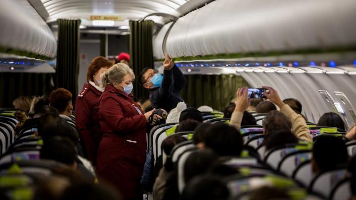 Новосибирских туристов из Армении и Америки вернут домой на вывозных рейсах — публикуем расписание