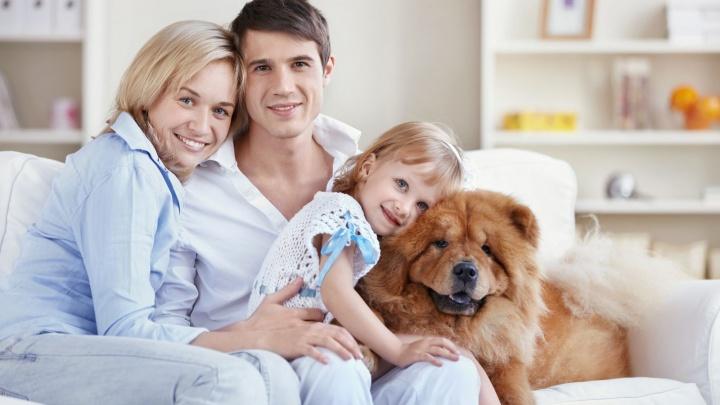 «Ингосстрах» и «Ингосстрах-Жизнь» запустили уникальную программу комплексного страхования