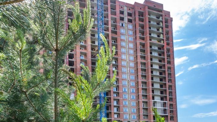 Вместо двора Заельцовский парк: в уникальной зоне строят жилой комплекс — кто будет здесь жить
