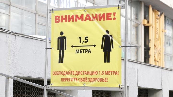«Нашему Ивану ничего не страшно»: как прошла первая летняя ярмарка в центре Архангельска