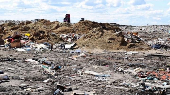 В 2021 году регоператор «Магнит» частично освободит два мусорных полигона