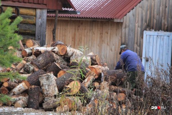 Планы по запасам дров в Поморье пока что выполнены на 81,6%