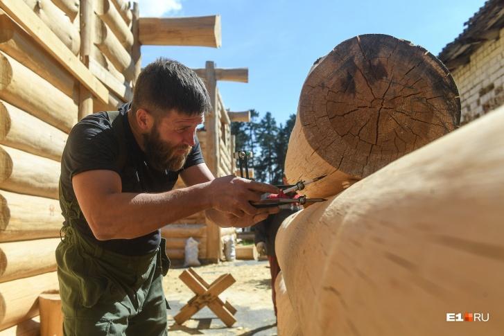 Строят дома из уральской сосны, эти деревья росли в Режевском районе