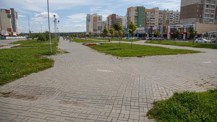 В Челябинске взялись за многострадальный сквер на Тополинке. Рассказываем, как его благоустроят