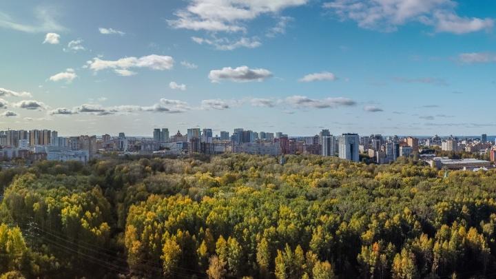 «Баланс интересов будет соблюден»: Дмитрий Самойлов — о строительстве дома по бульвару Гагарина, 18