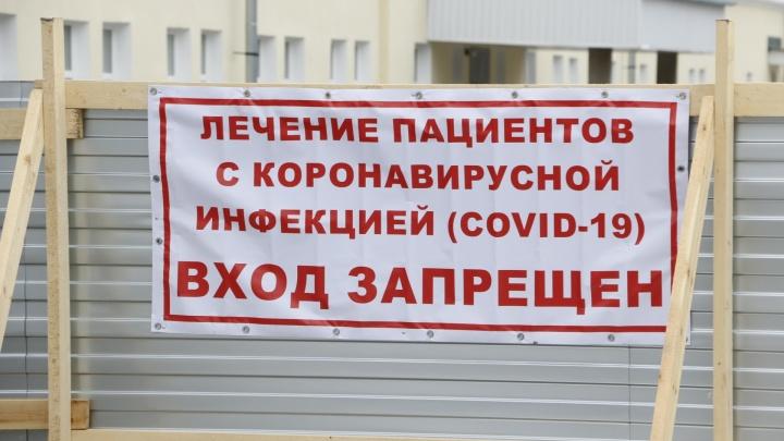 Сколько больных коронавирусом в Архангельской области подключено к аппаратам ИВЛ