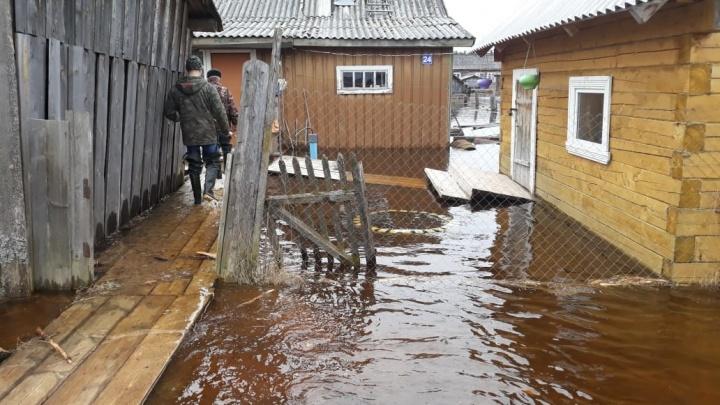 В Устьянском районе подтопило поселок Кидюга