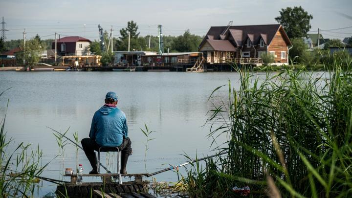 13 живописных озер в Новосибирске и вокруг — где есть пляжи, лодки и беседки, а где сосновый бор
