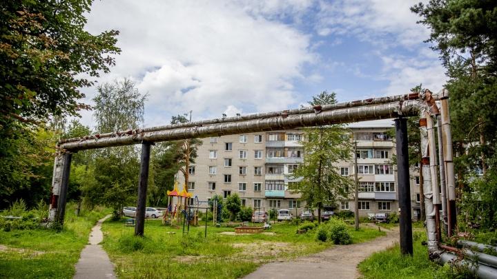 «Мы — живые»: жители посёлка в Ярославле доказали, что навести порядок во дворах можно и без властей