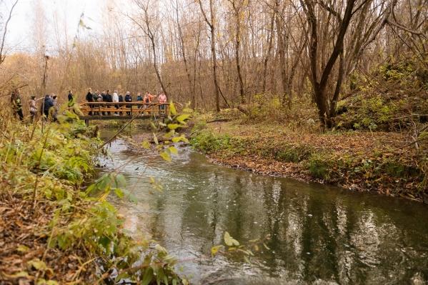 Речка Егошиха: в ближайшее время здесь собираются обустраивать долину, делатьпешеходные дорожки, лавочки, урны, элементы навигации