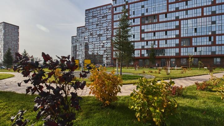 На берегу Оби строят жилой комплекс с гигантским парком и набережной