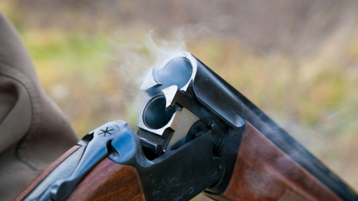 В Курганской области главу сельсовета наказали за незаконный отстрел косуль