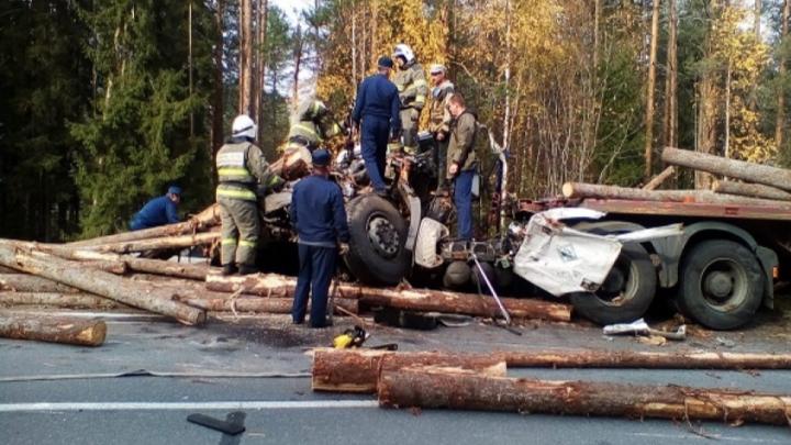 В Вельском районе погиб водитель лесовоза — его машина столкнулась с другим большегрузом