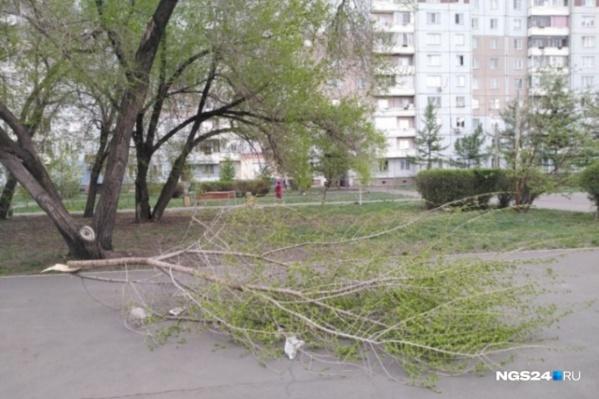 Красноярцам рекомендуют не покидать свои дома в стихию