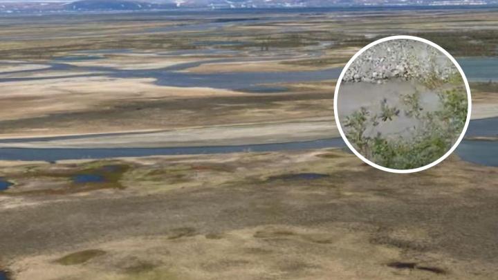 «Серая вода и рыжие берега»: еще одно предприятие «Норникеля» застали за сбросом отходов в тундру