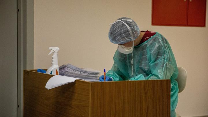В Новосибирской области зарегистрировали 24 новых случая коронавируса — 2 из них дети