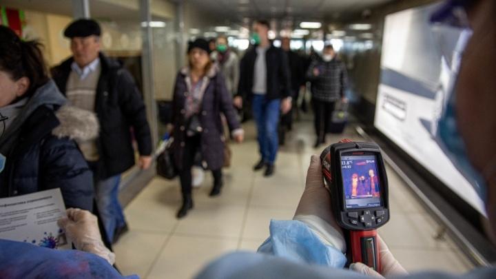 «Это наши земляки!»: власти Зауралья ответили, почему не закрыты границы для приезжих из Москвы
