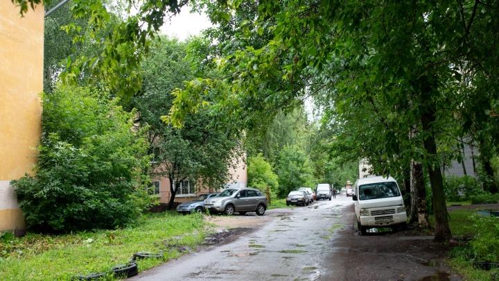 «Ведёт к гибели деревьев»: в Ярославле началась облава на парковщиков на газонах