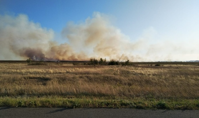 Ветер лишь сильнее раздувает пламя: в Волгоградской области вновь горит степь