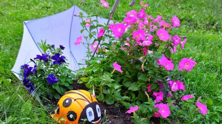 Жильцы дома на Инструментальной украсили двор цветами