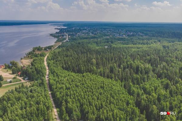 В Прикамье ввели временный запрет на походы в лес
