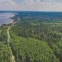 Пермякам временно запретили ходить в лес: нельзя собирать грибы, разжигать костры и гулять с собакой
