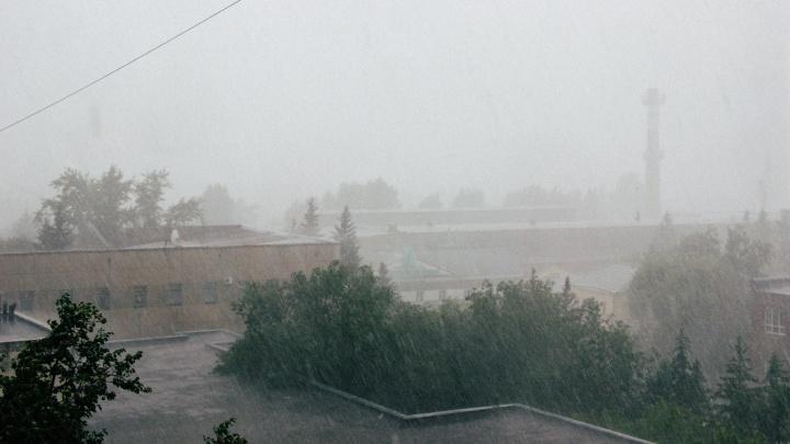 МЧС предупредило омичей о ливне и шквалистом ветре