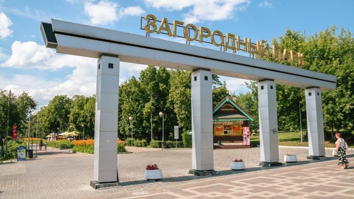 К реконструкции Загородного парка в Самаре хотят привлечь инвесторов
