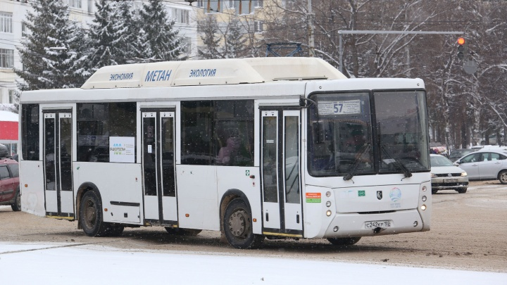 «Час я не могла дождаться»: уфимка — о том, как пыталась доехать до работы на автобусе