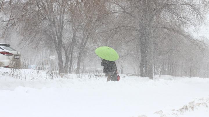 Зимняя весна: мартовский снегопад в Самаре в 30 фото
