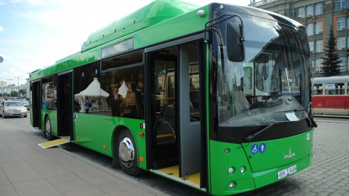 В этом году Екатеринбург закупит десятки новых автобусов