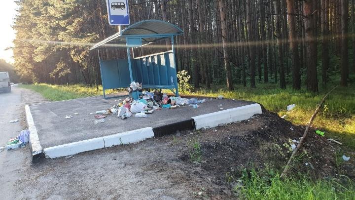 В Ярославле после выходных завалили мусором популярные карьеры