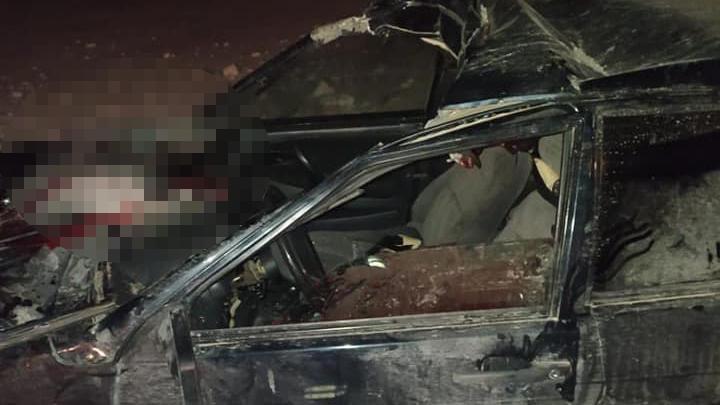 В Башкирии водитель ВАЗ-2115 скончался после столкновения с лошадью на трассе