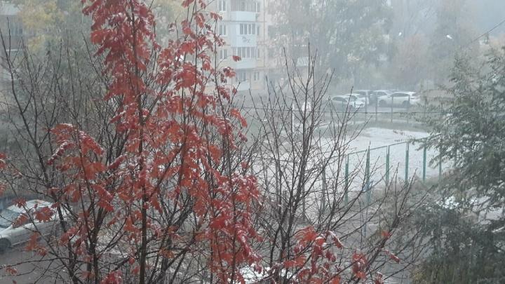 Зима близко: в Самаре выпал первый снег