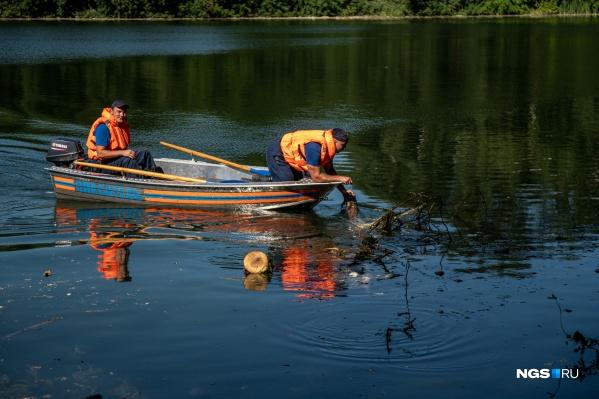 Расчищать озеро начали сегодня утром