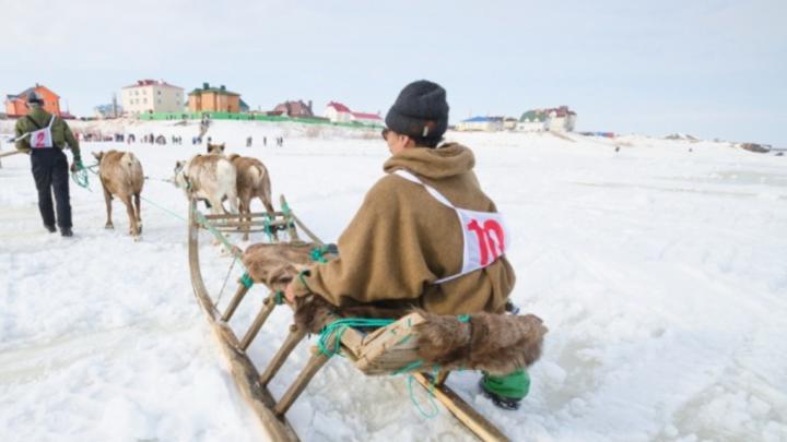 Жители НАО создали петицию против объединения региона с Архангельской областью