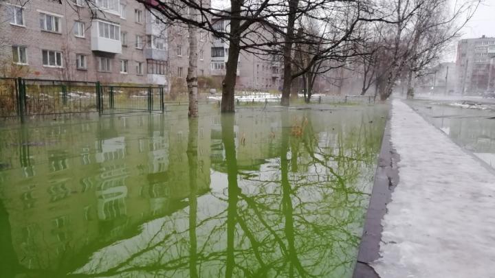 Как в фильмах ужасов: из-за аварии на теплотрассе в Архангельске разлилась ядовито-зелёная лужа