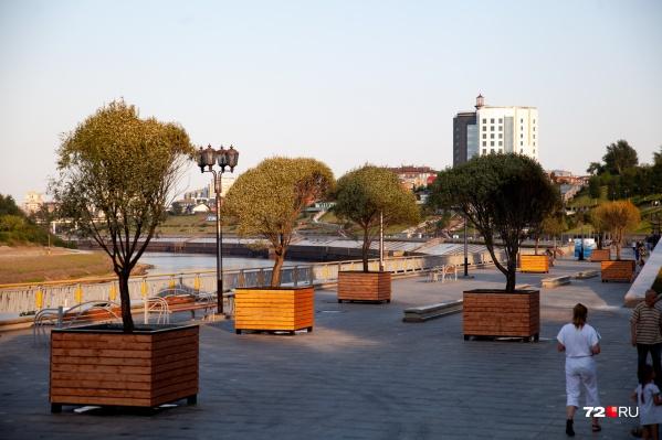 Такой красотой могут любоваться тюменцы и гости города, гуляя по набережной в погожий летний день