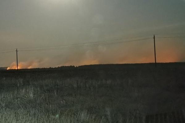 По оценкам лесников, сгорело всего три гектара леса