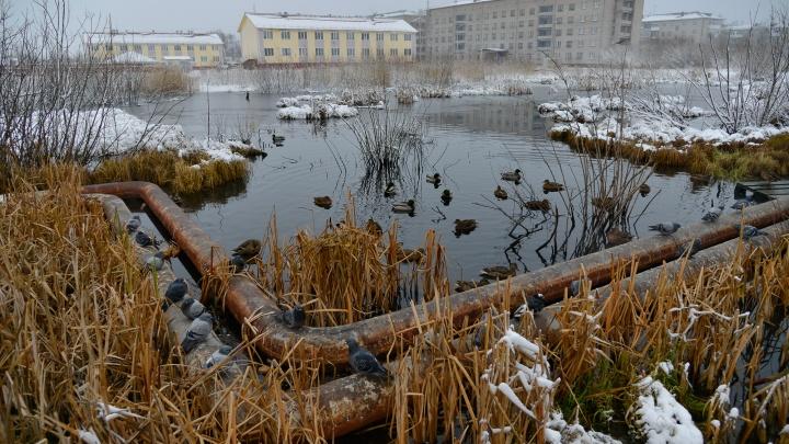 Весь Сульфат — без отопления: где еще в Архангельске отключат коммунальные услуги 7декабря