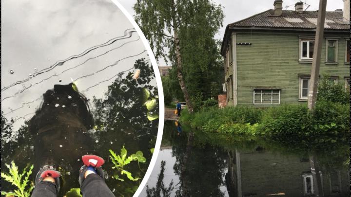 «Мы живем в болоте»: почему архангелогородцы выходят из дома через окно. Репортаж после ливня
