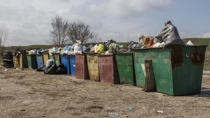 «Задушил» долгами: в Волгограде крупнейший мусорный оператор выплатит коммерсантам 35 млн рублей