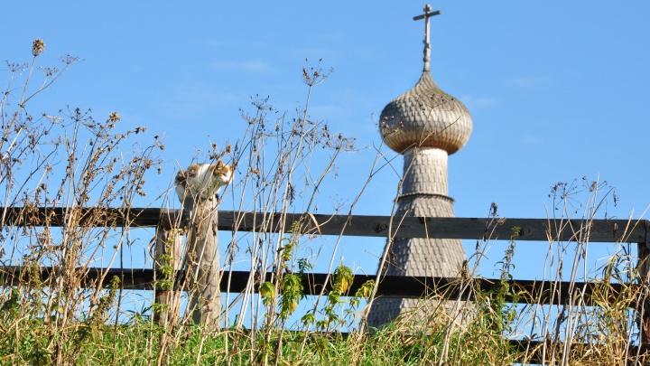 За отдых в Архангельской области туристы смогут получить кешбэк до 15 тысяч рублей