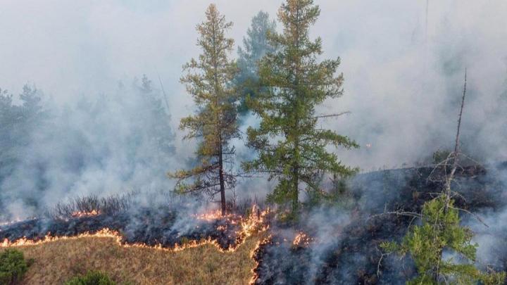 Пожар в национальном заповеднике Башкирии попал на видео
