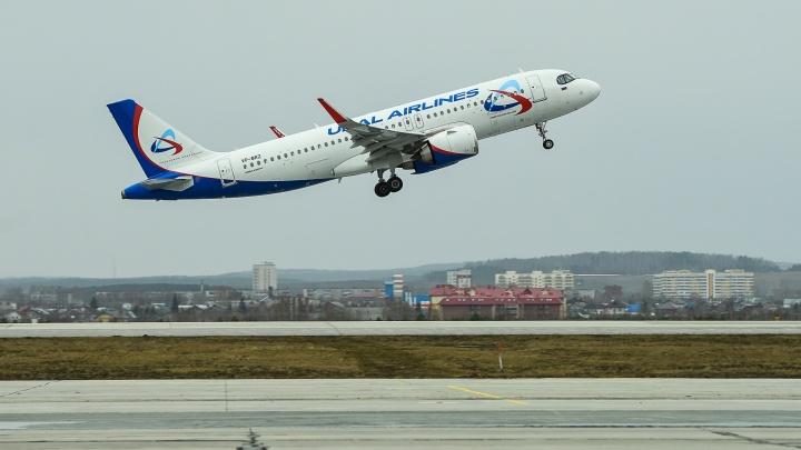 Из Екатеринбурга ночью вывезли 100 депортированных киргизов