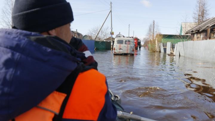 По улицам — на лодке: смотрим, как подтопило дачи на острове Краснофлотский в Архангельске